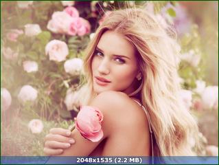 http://i5.imageban.ru/out/2015/12/16/ae1a7237529fb8eae248439d79e20817.png