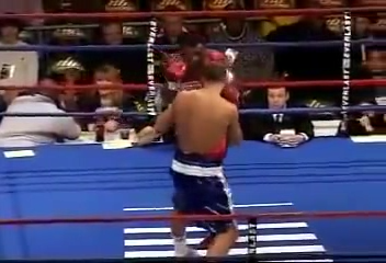 Sergey Kovalev vs Francois Ambang_06.03.2010_TVRip_EN.mp4_snapshot_02.29_[2016.01.07_23.44.50].png