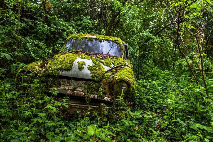 Заброшенное авто