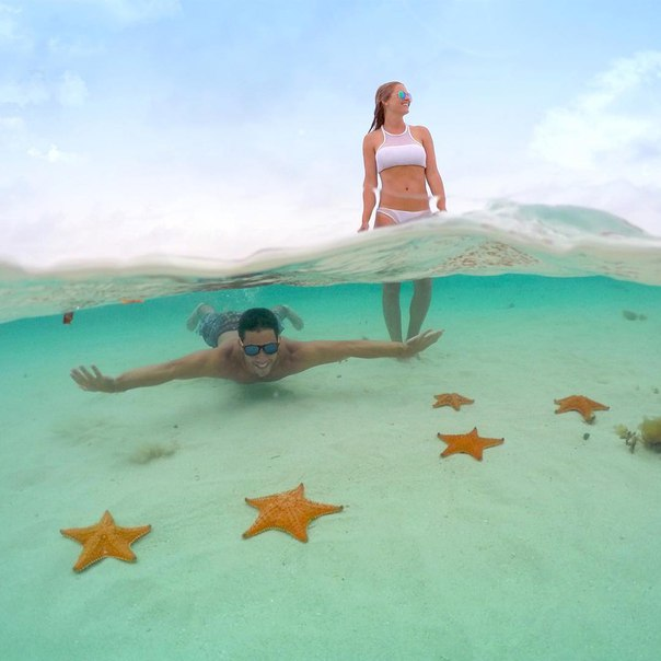 Морские звезды 1