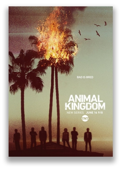 По волчьим законам / Animal Kingdom [S01] (2016) WEB-DLRip-AVC от NNMClub | NewStudio