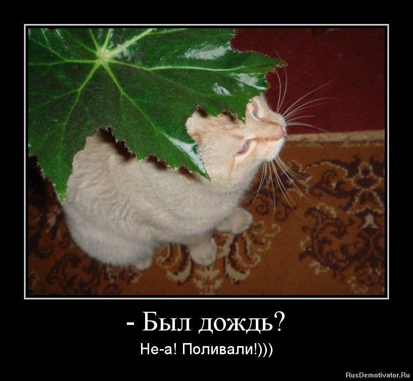 http://i5.imageban.ru/out/2016/08/19/d6421e96ad381170c0aac13f0ab1369e.jpg