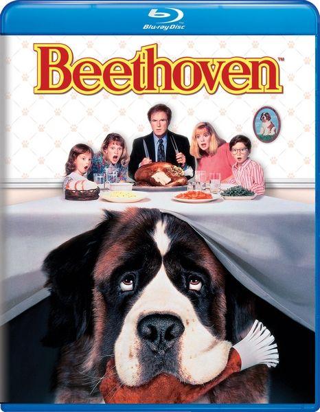 Бетховен / Beethoven (Брайан Левант / Brian Levant) [1992, США, комедия, семейный, драма, BDRip] 3xMVO (Первый канал, СТС, Премьер Видео) + Original Eng + subs (Rus, RusF, Eng, Eng SDH, Eng SDH Colored)