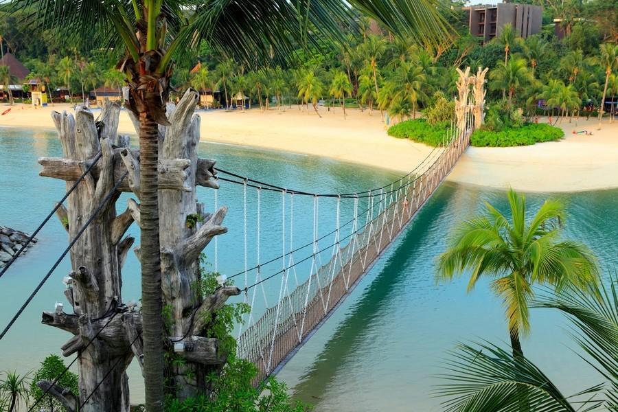 Тропический мостик