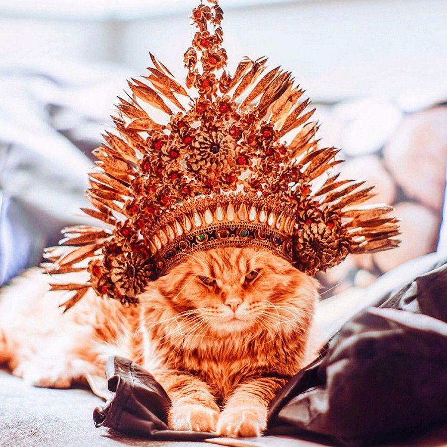 Рыжий король