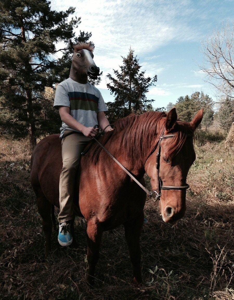 Конь на коне