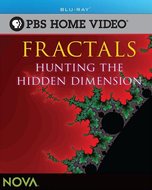 Фракталы. Поиски новых размерностей / Fractals. Hunting The Hidden Dimension (2008) BDRip [H.264/720p-LQ]