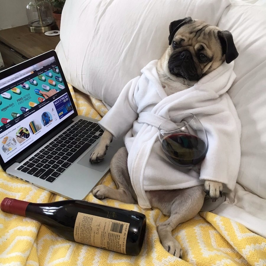 Мои выходные