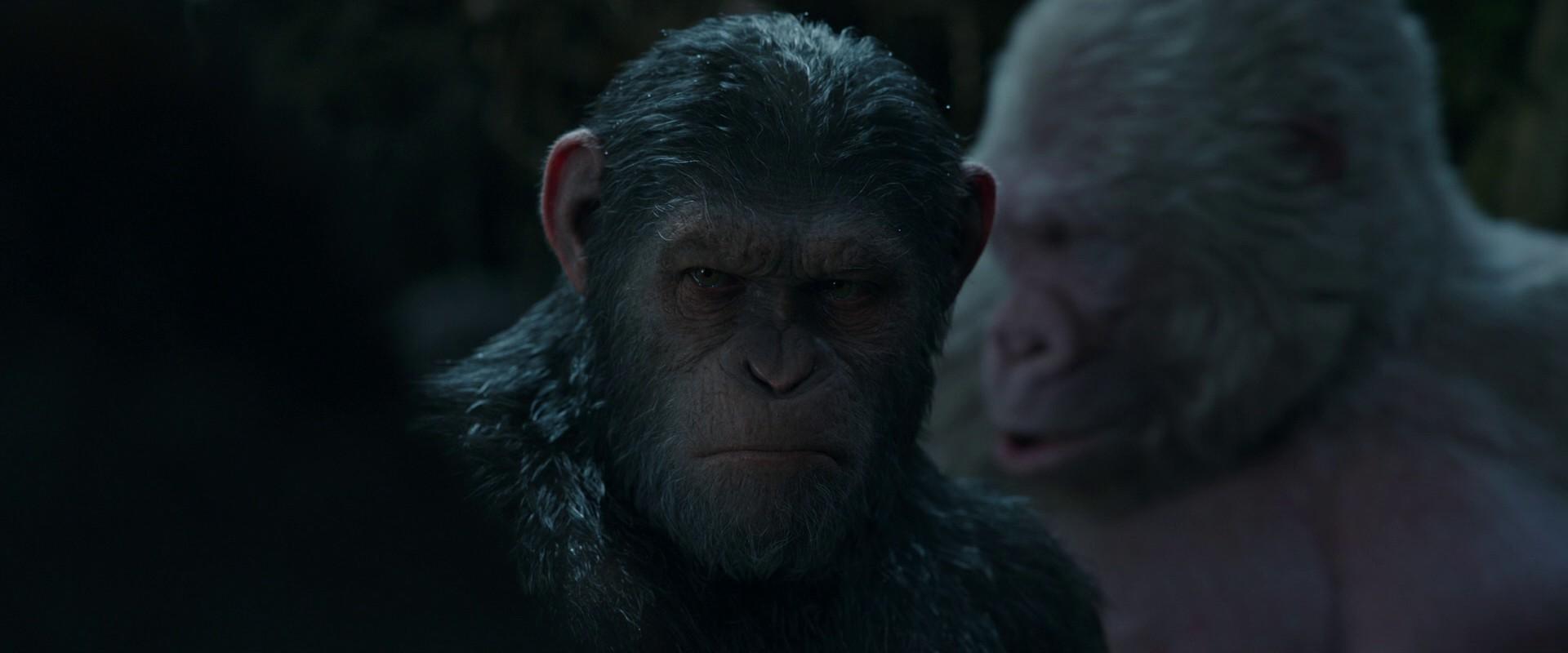 Планета обезьян: Война / War for the Planet of the Apes (2017) BDRip 1080p
