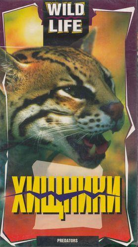 Хищники / Хищники Америки / Americas predators (Lynn Berland) [1995, документальный, VHSRip]