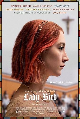 Lady Bird 2017 DVDScr XVID AC3 HQ Hive-CM8