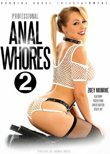 Профессиональные анальные шлюхи 2 / Professional Anal Whores 2 (2017) WEB-DL