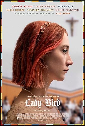 Lady Bird 2017 1080p WEB-DL X264 AC3-EVO