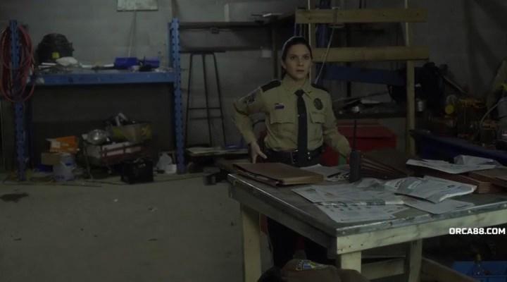Ещё один волк-полицейский / Another WolfCop (2017/WEB-DLRip), P