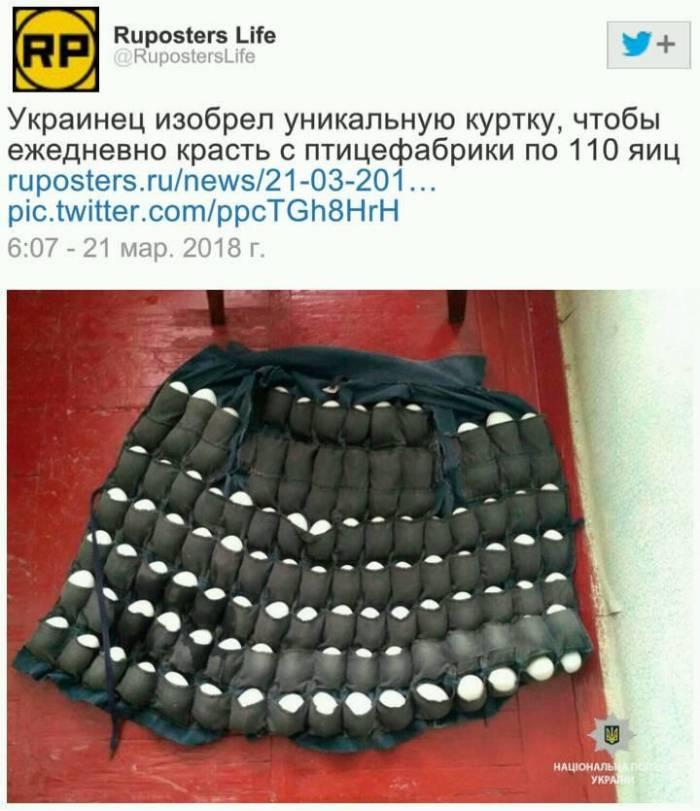 85b1059e2f7897325879a53390f46071.jpg