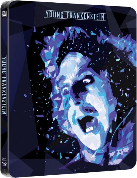 Молодой Франкенштейн / Young Frankenstein (1974) BDRip [H.265/1080p-LQ] [10-bit]