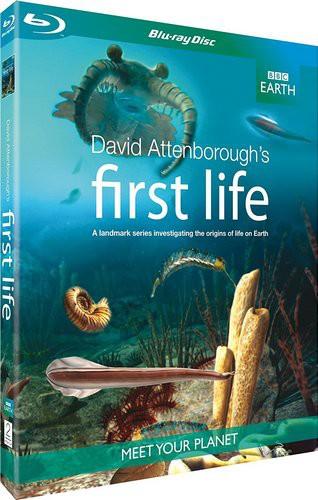 BBC: Истоки жизни (Первая жизнь с Дэвидом Аттенборо) / First Life (David Attenborough's First Life) (2010) BDRemux [VC-1/1080i] (Серии 1-2 из 2) [AVO]