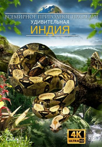 Всемирное природное наследие: (Удивительная Индия) / World Natural Heritage: Amazing India (2018) WEBRip [VP9 / 2160p] [4K, HDR] [EN]