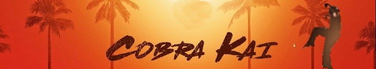 Cobra Kai S01 720p-1080p RED WEBRip AAC5 1 x264-CONVOY