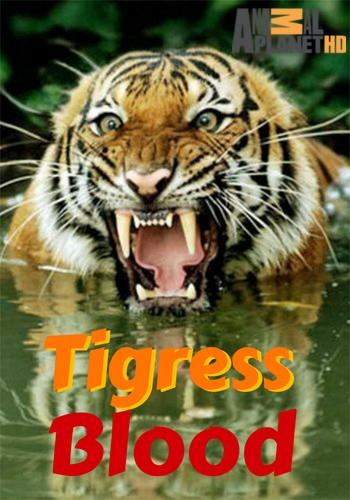 Animal Planet. Банда тигриц / Tigress Blood (2014) HDTVRip [H.264/1080i-LQ]