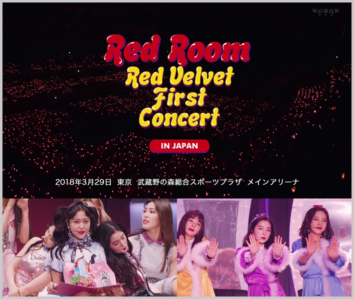 20180723.0351.4 Red Velvet - 1st Concert ''Red Room'' in Japan (WOWOW HD 2018.07.22) (JPOP.ru).ts.png