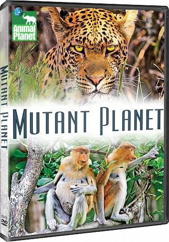 Animal Planet: Планета мутантов (Жизненная сила) / Mutant Planet (Life Force) (2010-2014) HDTV [H.264/1080i-LQ] (сезоны 1-2, эпизоды 12 из 12)