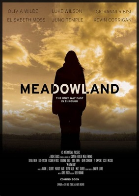 Meadowland - Scomparso (2015) .mkv WEB-DL 720p ITA ENG SPA HUN H264 Subs VaRieD
