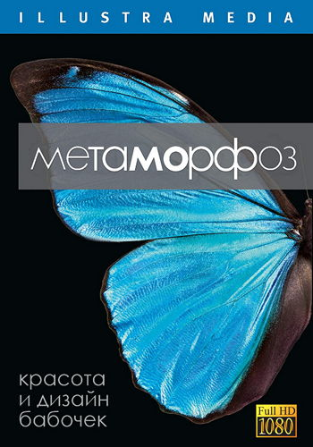 Метаморфоз / Metamorphosis (2011) HDRip [H.264/1080p-LQ] [MVO]
