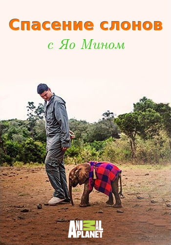Animal Planet: Спасение слонов с Яо Мином / Saving Africas Giants with Yao Ming (2014) HDTV [H.264 / 1080i-LQ]