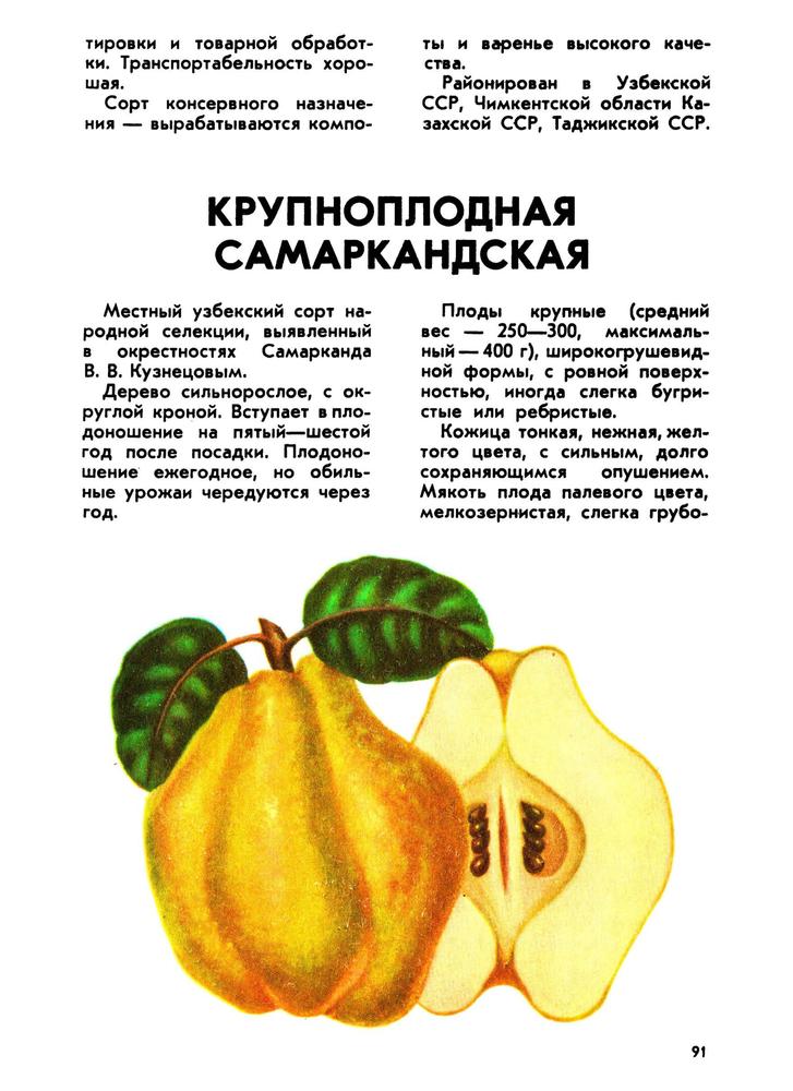 https://i5.imageban.ru/out/2019/02/08/119b19229dadafd4782ef408f4dd769c.png