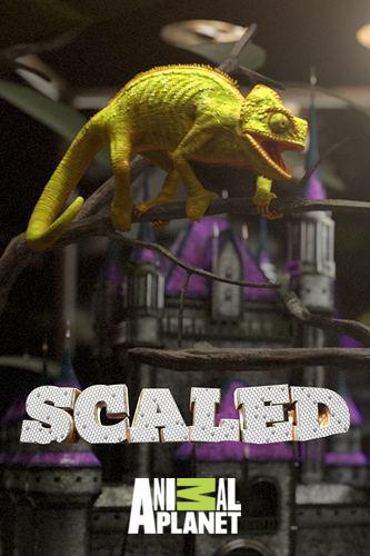 Animal Planet: Дом для рептилий. Агамы Дикого Запада / Scaled (2018) HDTV [H.264 / 1080i-LQ]