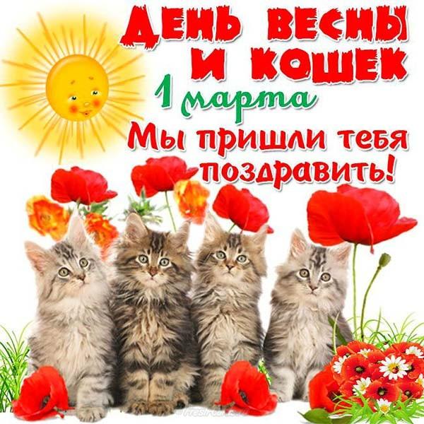 https://i5.imageban.ru/out/2019/03/01/1ed63d6ce7c2bbbd8ef74dfd091a2527.jpg
