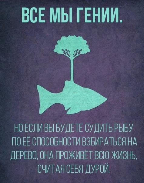 https://i5.imageban.ru/out/2019/03/06/a4a2f845d778aa85cabb800319d6d16f.jpg
