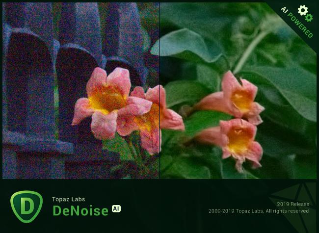 Topaz DeNoise AI 1.2.1 x64 (+ Portable)