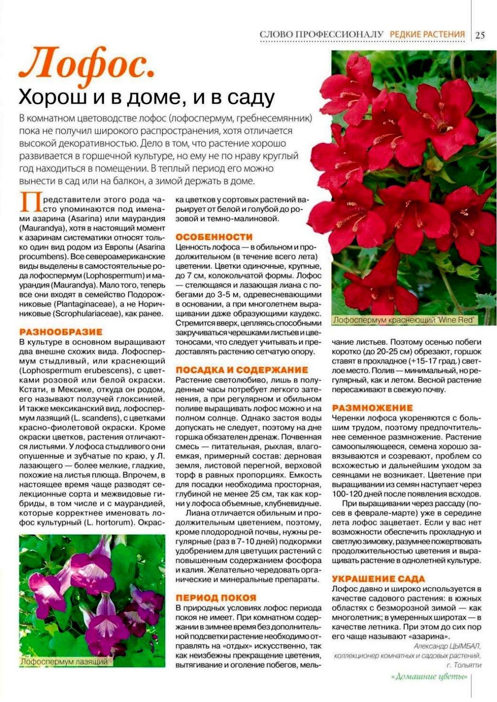 статьи о растениях из  газет и журналов - Страница 8 726d613a36c5568877ddd8bee0e988d9