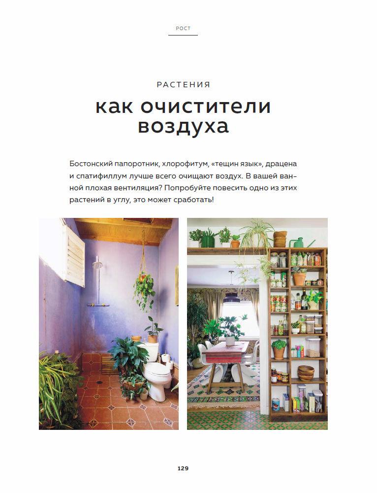 https://i5.imageban.ru/out/2019/06/03/d4c6203cec4edce8d6b0a1dcee61b5c3.jpg