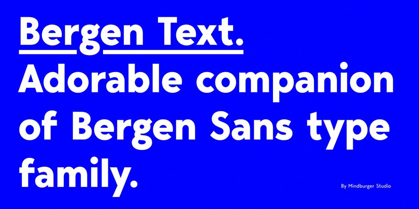 Шрифт Bergen Text