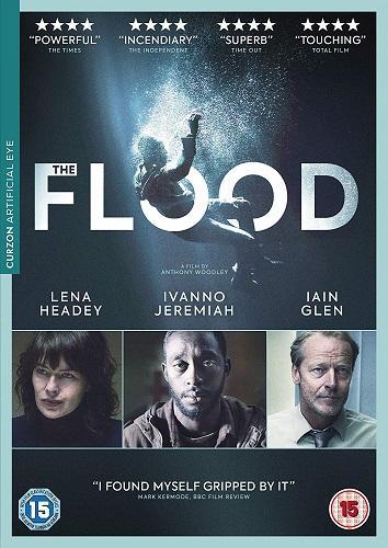 The Flood 2019 1080p WEB-DL H264 AC3-EVO