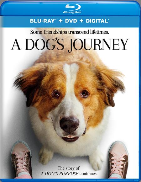 Собачья жизнь 2 / A Dog's Journey (2019) BDRip | iTunes