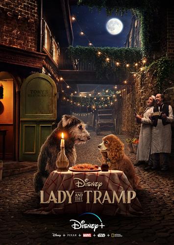 Lady and the Tramp 2019 1080p HDRip X264-EVO