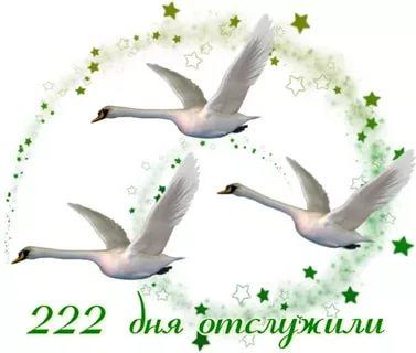 https://i5.imageban.ru/out/2020/02/04/992bb33026e3e6f55c60cdfe6d28c9ea.jpg
