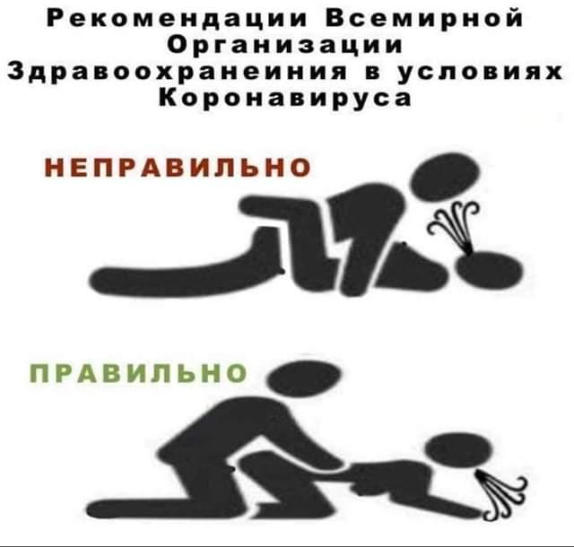 https://i5.imageban.ru/out/2020/03/14/8bde1ae3a77311651a7683e21a738d55.jpg