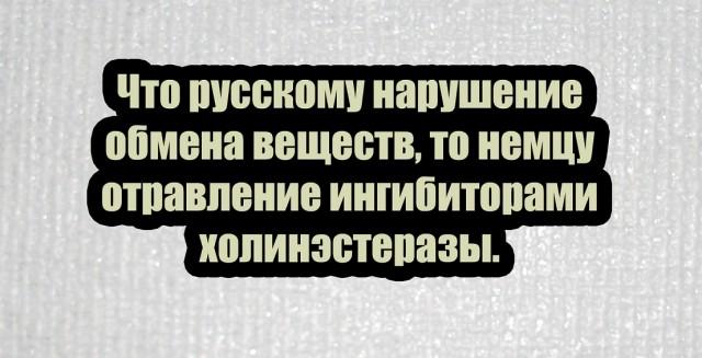 https://i5.imageban.ru/out/2020/09/01/2c6a7a2783bbdb817aa8e5576b72ff13.jpg