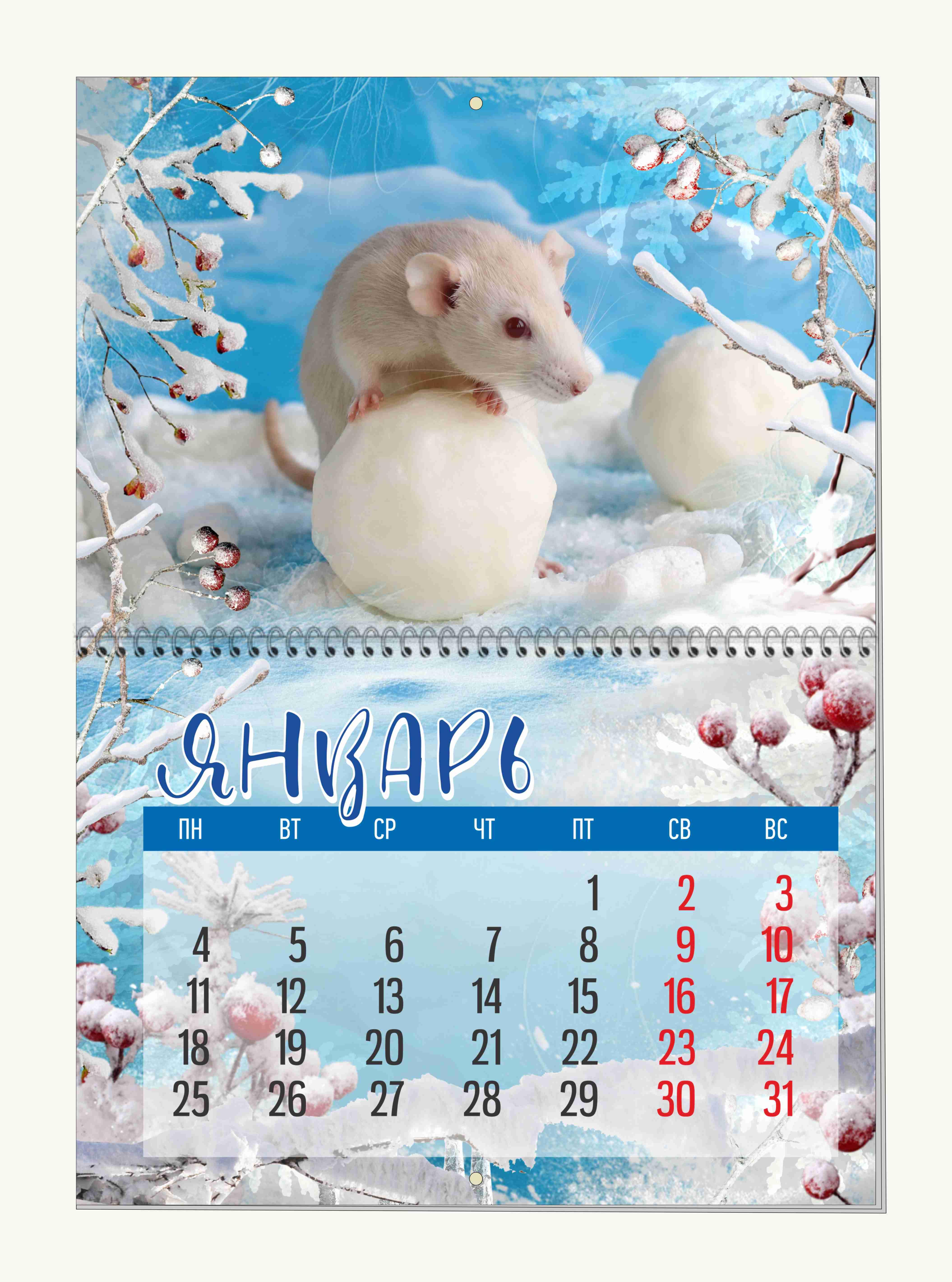 kalendar2021_primer1.jpg