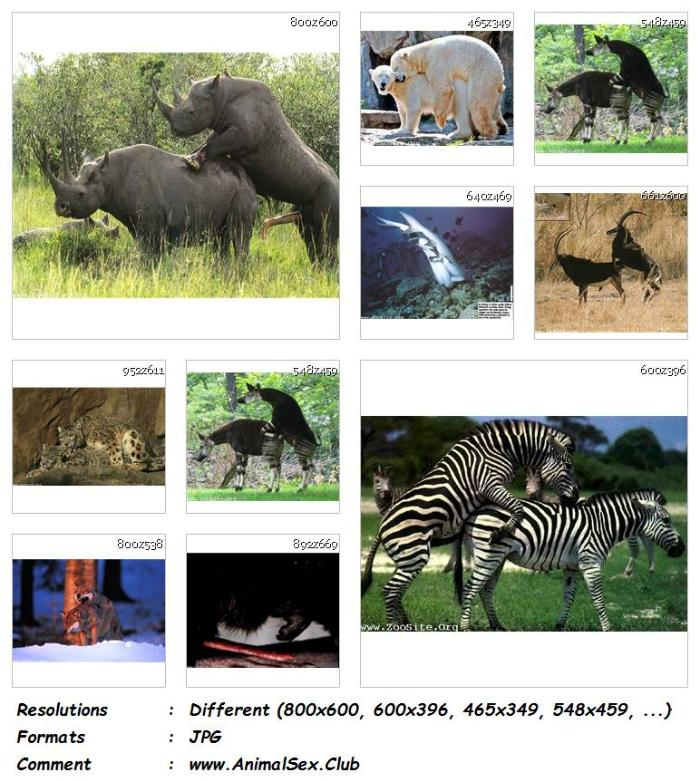 Animal Sex Club - Page 428 of 450 - Your ZooSex Site For Download ...