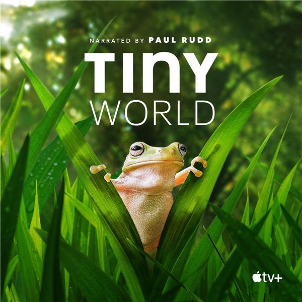 Крошечный мир / Tiny World [Сезон: 2] (2021) WEB-DL 1080p | HDrezka Studio