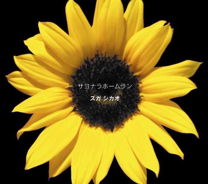 20210610.1336.04 Suga Shikao - Sayonara Home Run (2010) (DVD) cover.jpg