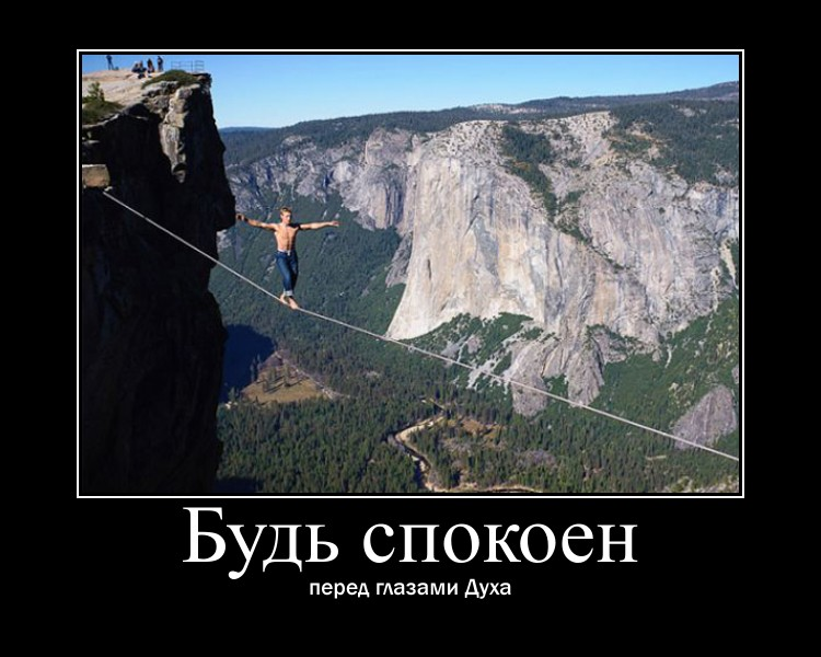 https://i5.imageban.ru/out/2021/07/17/025842a9a75efa7e2b31eb96c3225401.jpg