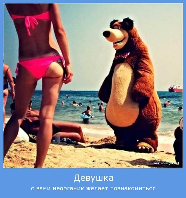 https://i5.imageban.ru/out/2021/07/17/062ae91e2df8b907488a00e480b5df71.jpg