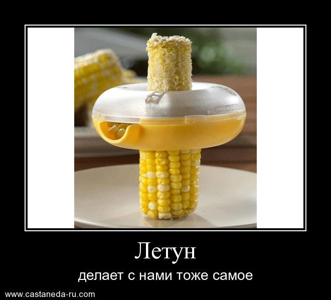 https://i5.imageban.ru/out/2021/07/17/0767ec15886f10cfd7eec87be1c6be2b.jpg